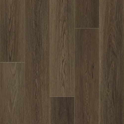 Barrel Oak