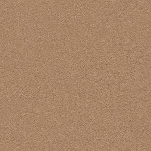SECOND GLANCE Desert View 00665