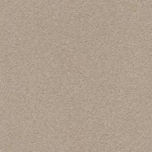 SECOND GLANCE Pashmina 00754