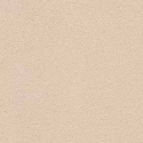 SECOND GLANCE Delicate Tan 00163