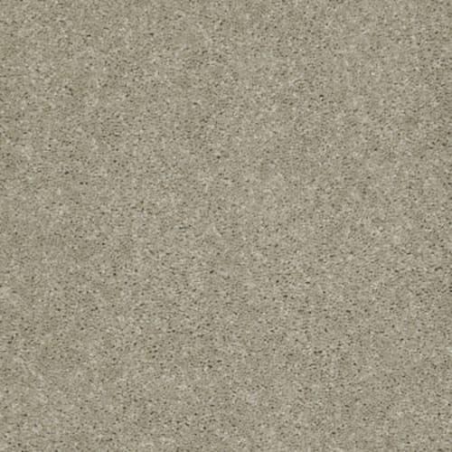 Napa Honeycomb 00200