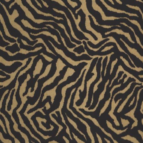 Zebra Grazer 05704