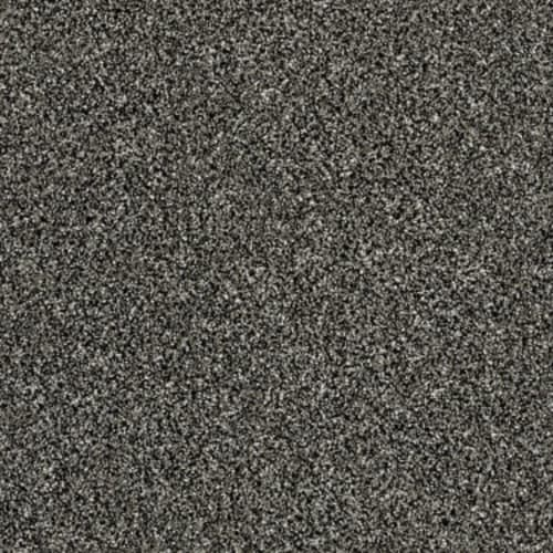 WORK THE COLOR Meteorite 00501