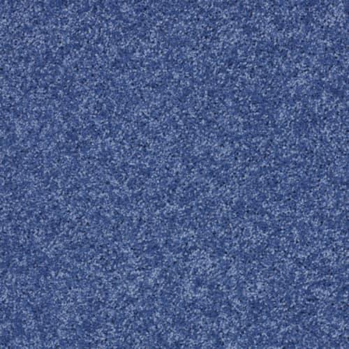 Cobalt Vibe