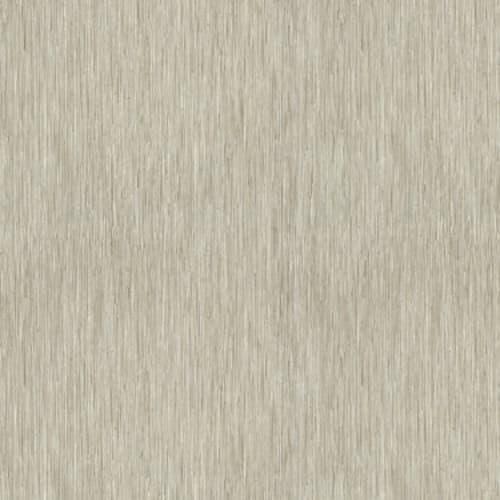 Coastal Plains 12 Pine Barrens 00104