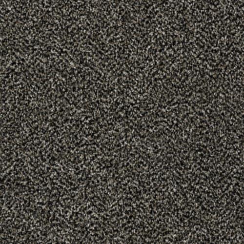 WORK THE COLOR Black Granite 00503