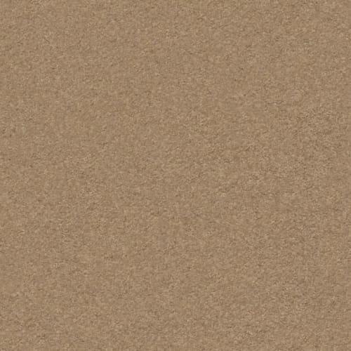 CLASSIC BEAUTY Desert View 00665