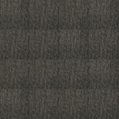 Carbon Copy Carbonized 06510
