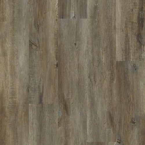 IMPACT PLUS Modeled Oak 00709