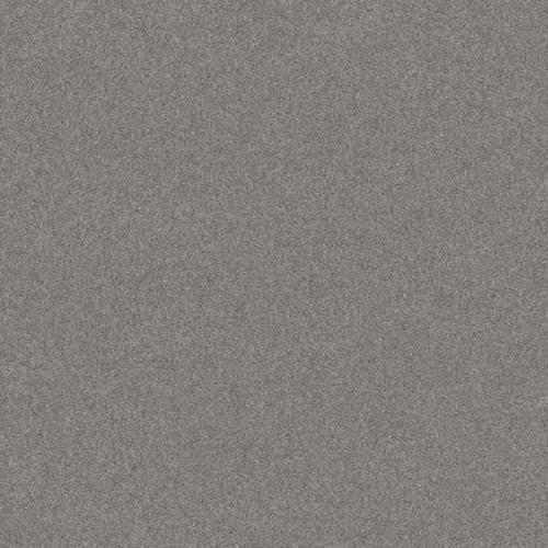 HARMONIOUS II Grey Fox 00504