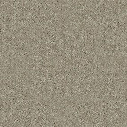 Dyersburg Classic 12 Fossil 00761