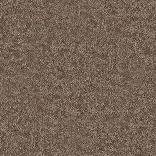 Dyersburg Classic 12 Winter Wheat 55791