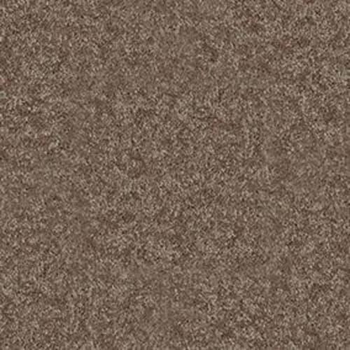 DYERSBURG CLASSIC 15 Winter Wheat 55791