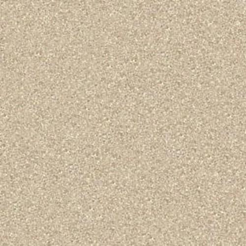 Shasta II Sand Dollar 00116