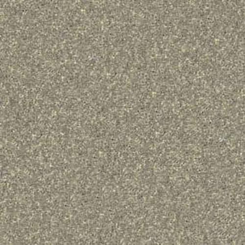 Shasta II Fossil 00761