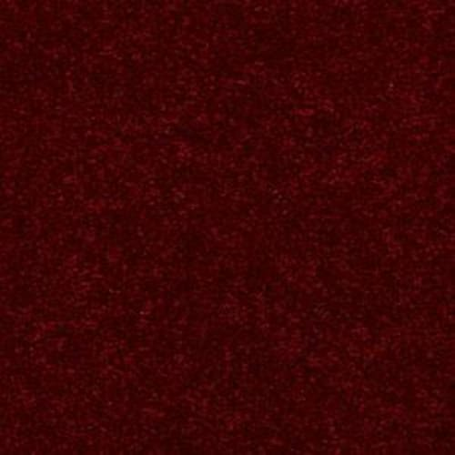 Shasta II Crimson 55803