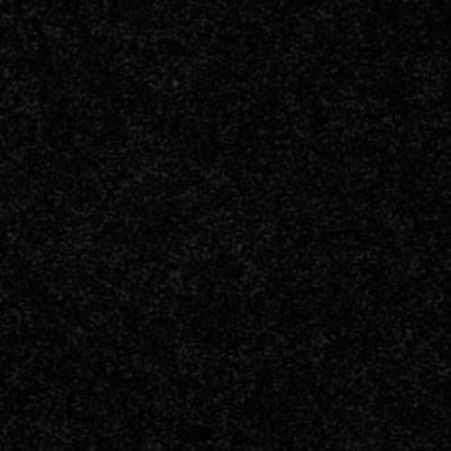 Shasta II Coal Black 55502