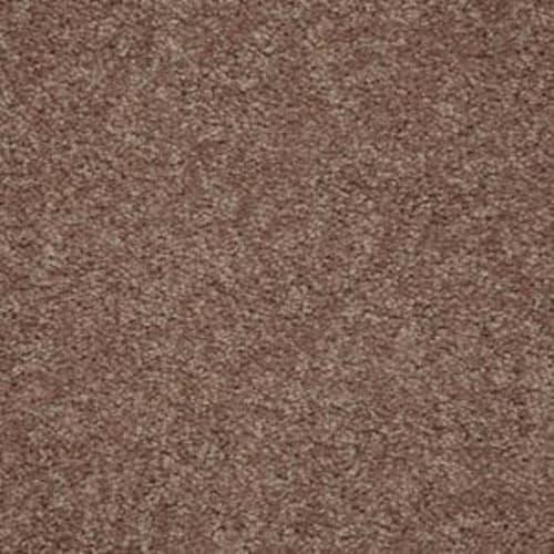 Shasta II Candied Truffle 55750