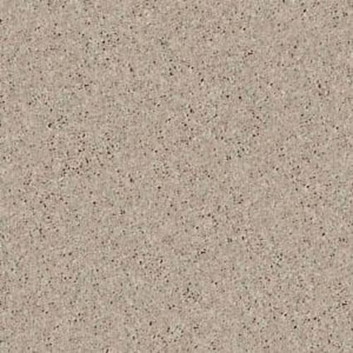 Shasta II Plaster 55752