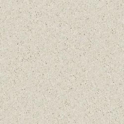 Shasta II Taupe 55105