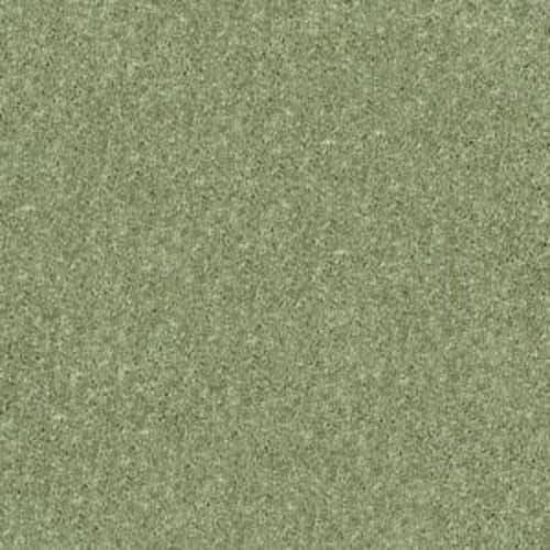 NEWBERN CLASSIC 15 Going Green 00330