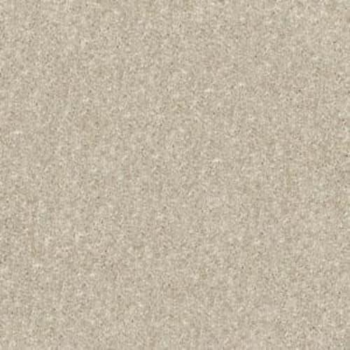 NEWBERN CLASSIC 15 Sand Dollar 00116