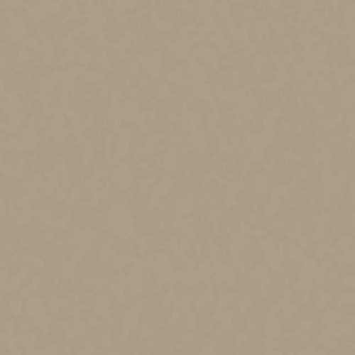 Endless Love 12 in Taupe Mist - Carpet by Shaw Flooring