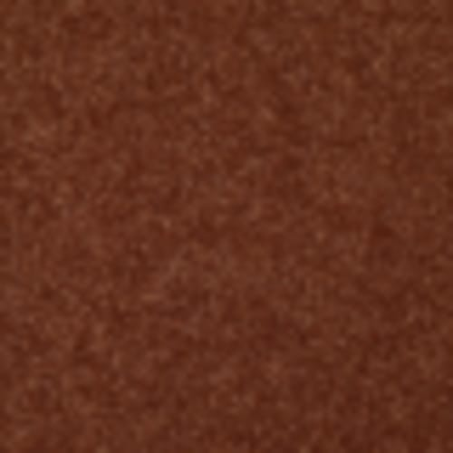 Endless Love 12 in Saffron - Carpet by Shaw Flooring