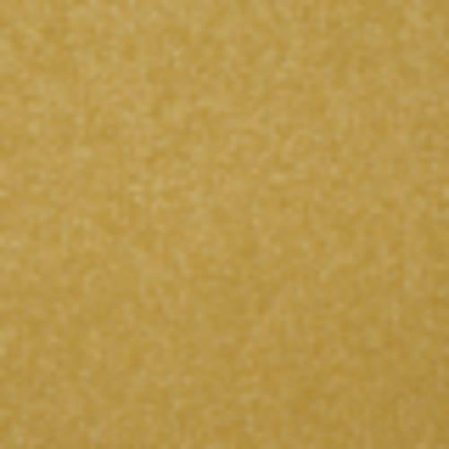 Endless Love 12 in Lemon Zest - Carpet by Shaw Flooring