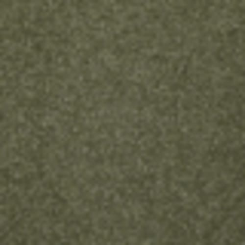 Endless Love 12 in Fresh Herbs - Carpet by Shaw Flooring