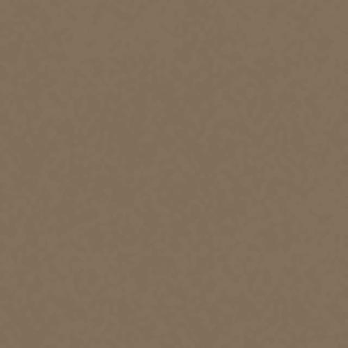 Endless Love 12 in Muslin - Carpet by Shaw Flooring