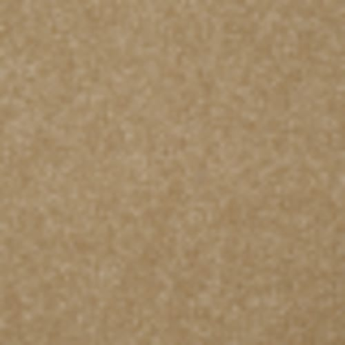Endless Love 12 in Cabana - Carpet by Shaw Flooring