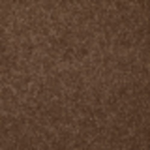Endless Love 12 in Milk Chocolate - Carpet by Shaw Flooring