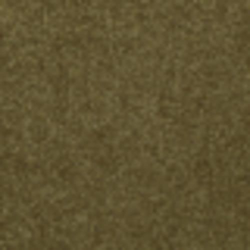 Endless Love 12 in Lemongrass - Carpet by Shaw Flooring
