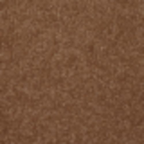 Endless Love 12 in Nutmeg - Carpet by Shaw Flooring