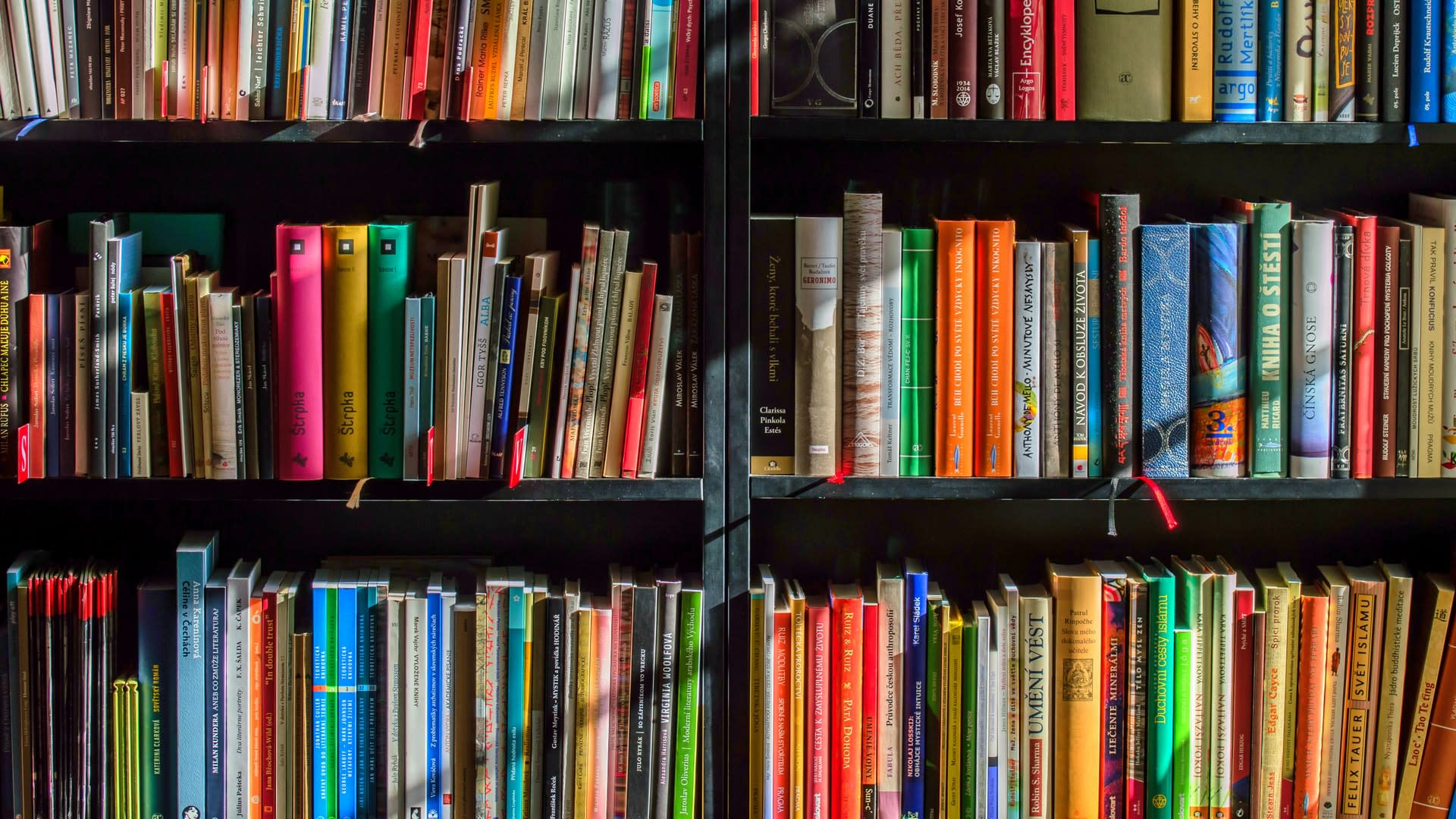 La collezione da 80 mila euro del Ladro di Libri