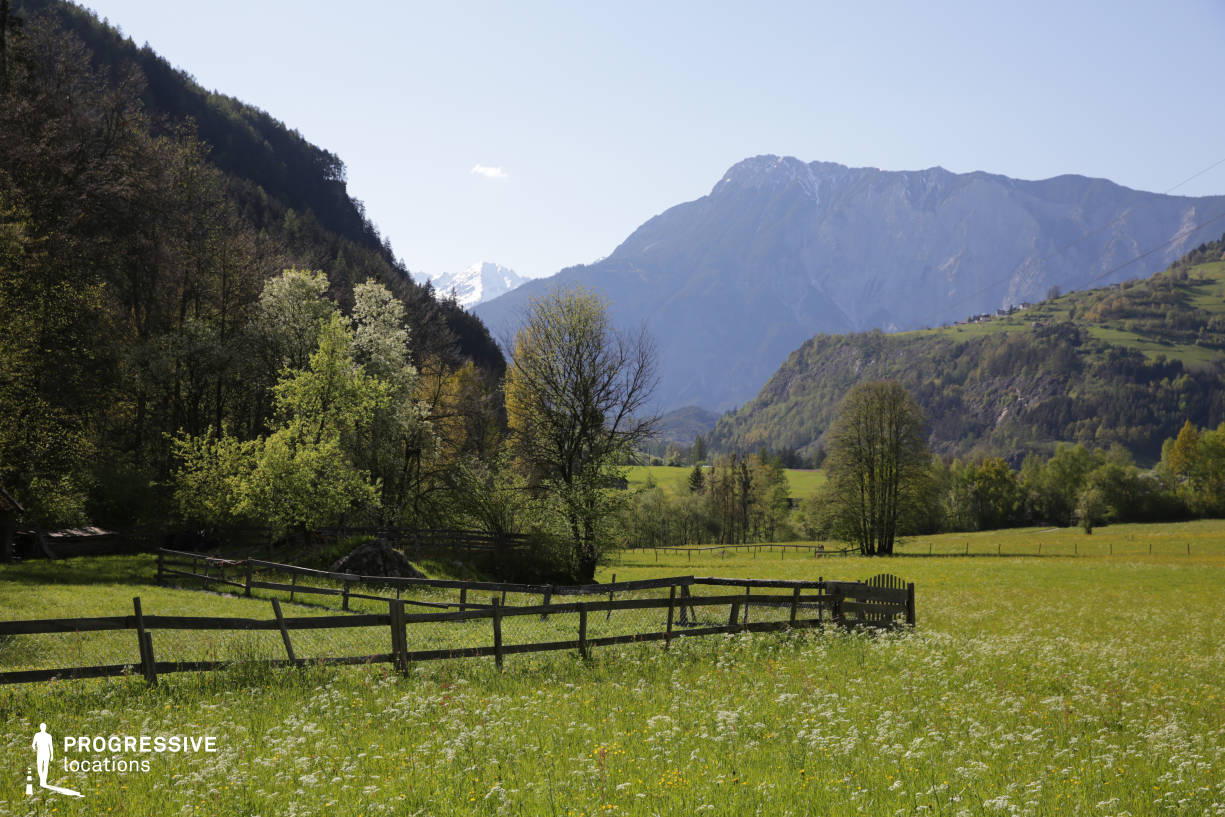 Locations in Austria: Meadow, Oetztal Valley