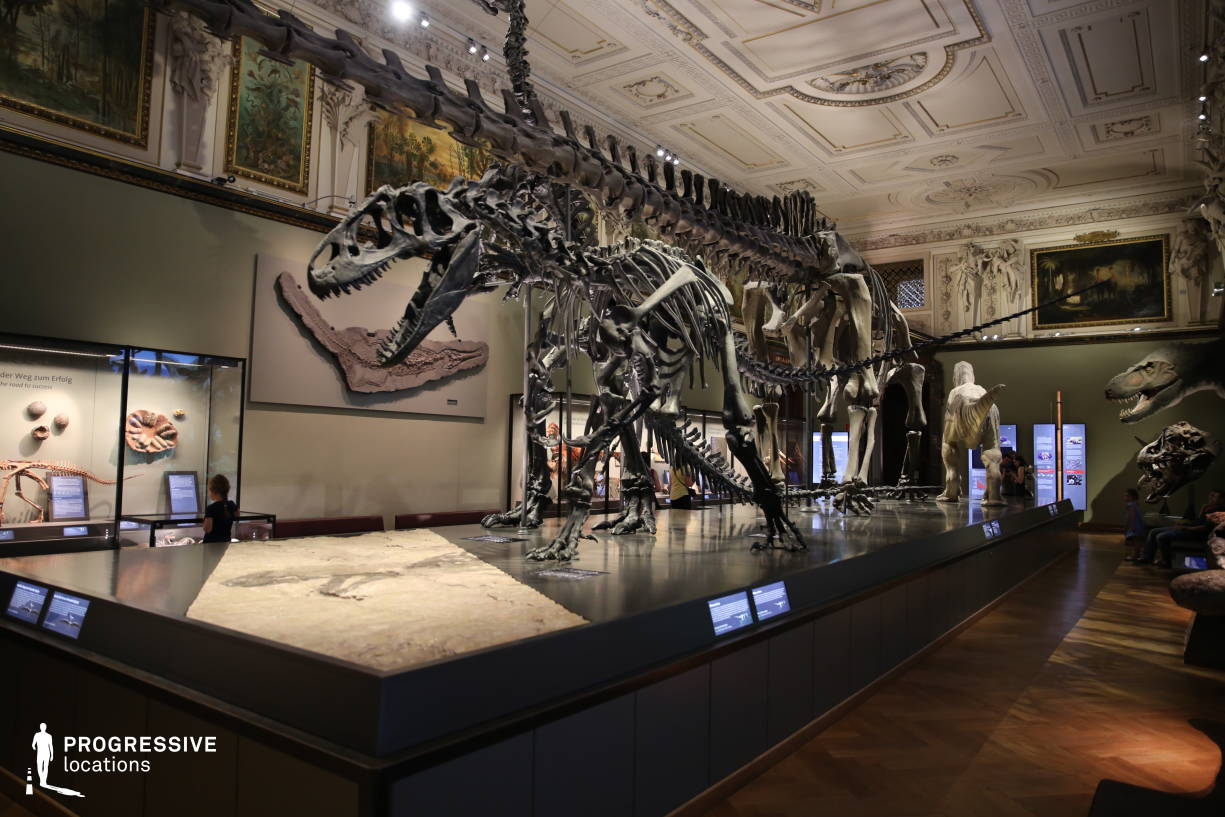 Locations in Austria: Exhibition Room, Natural History Museum