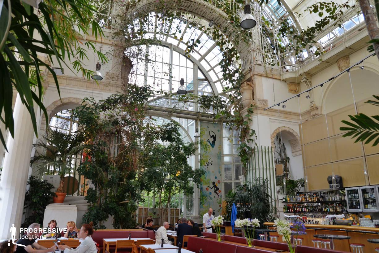 Locations in Austria: Glass Hall, Palmenhaus