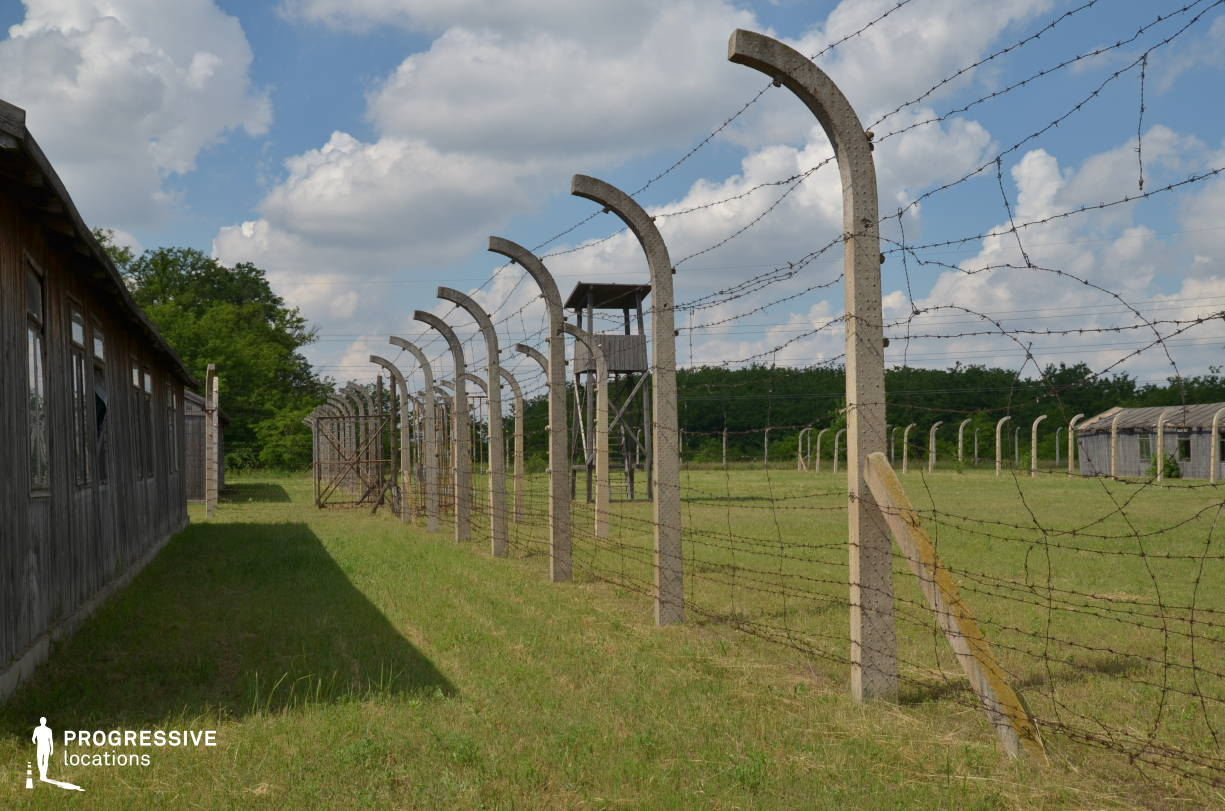 Labor Camp Backlot: Barbed Wire Fence