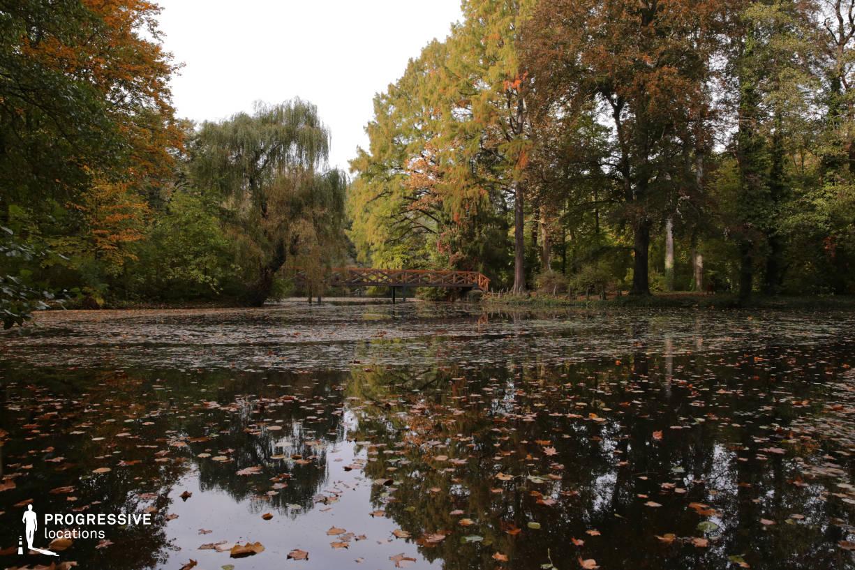 Locations in Budapest: Autumn Lake, Alcsut