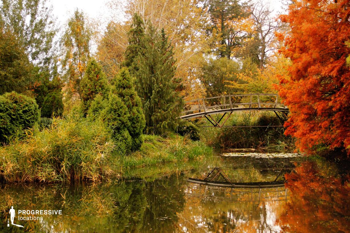 Locations in Hungary: Bridge, Autumn Park