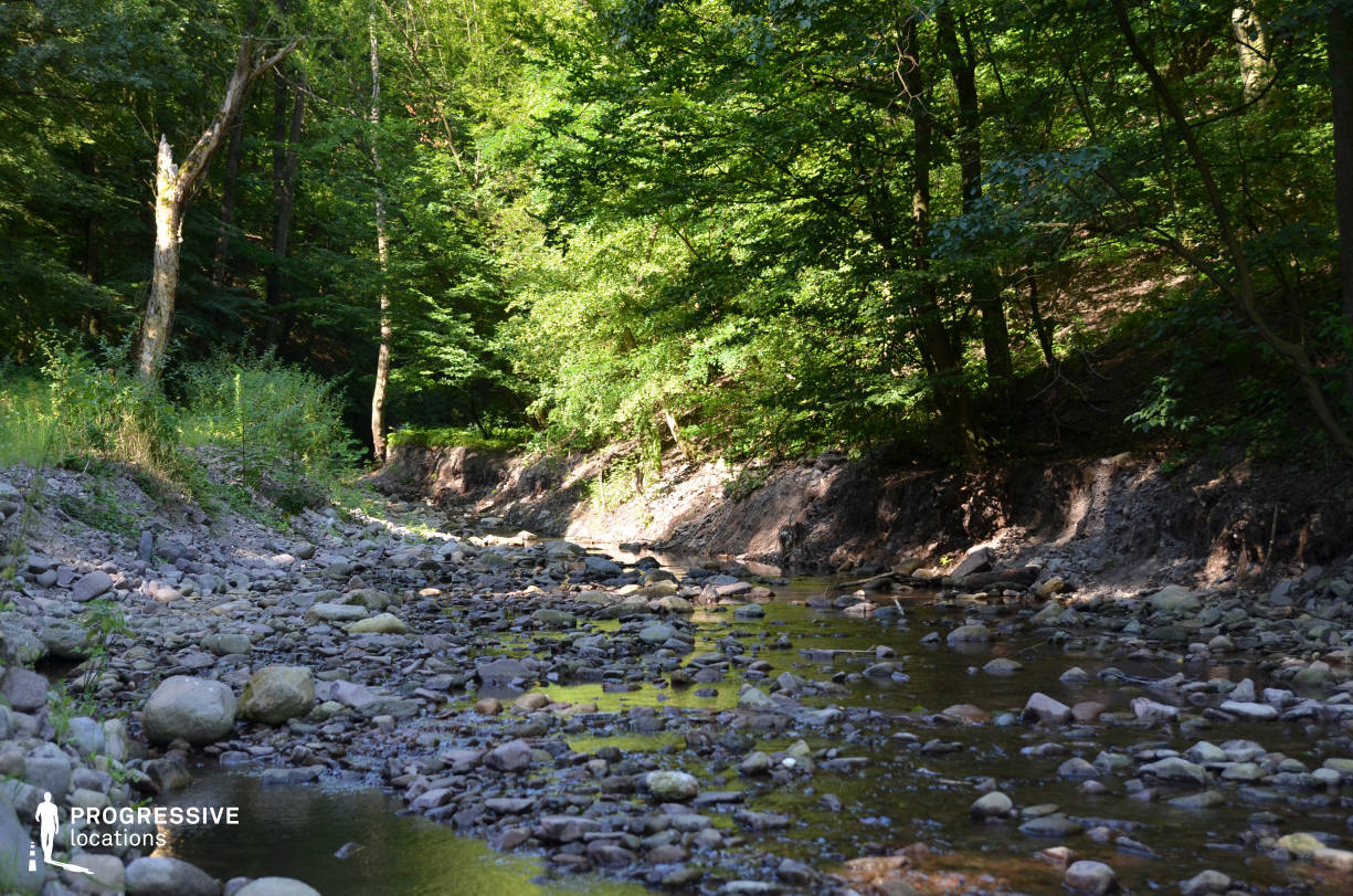 Locations in Hungary: Stream, Visegrad Forest