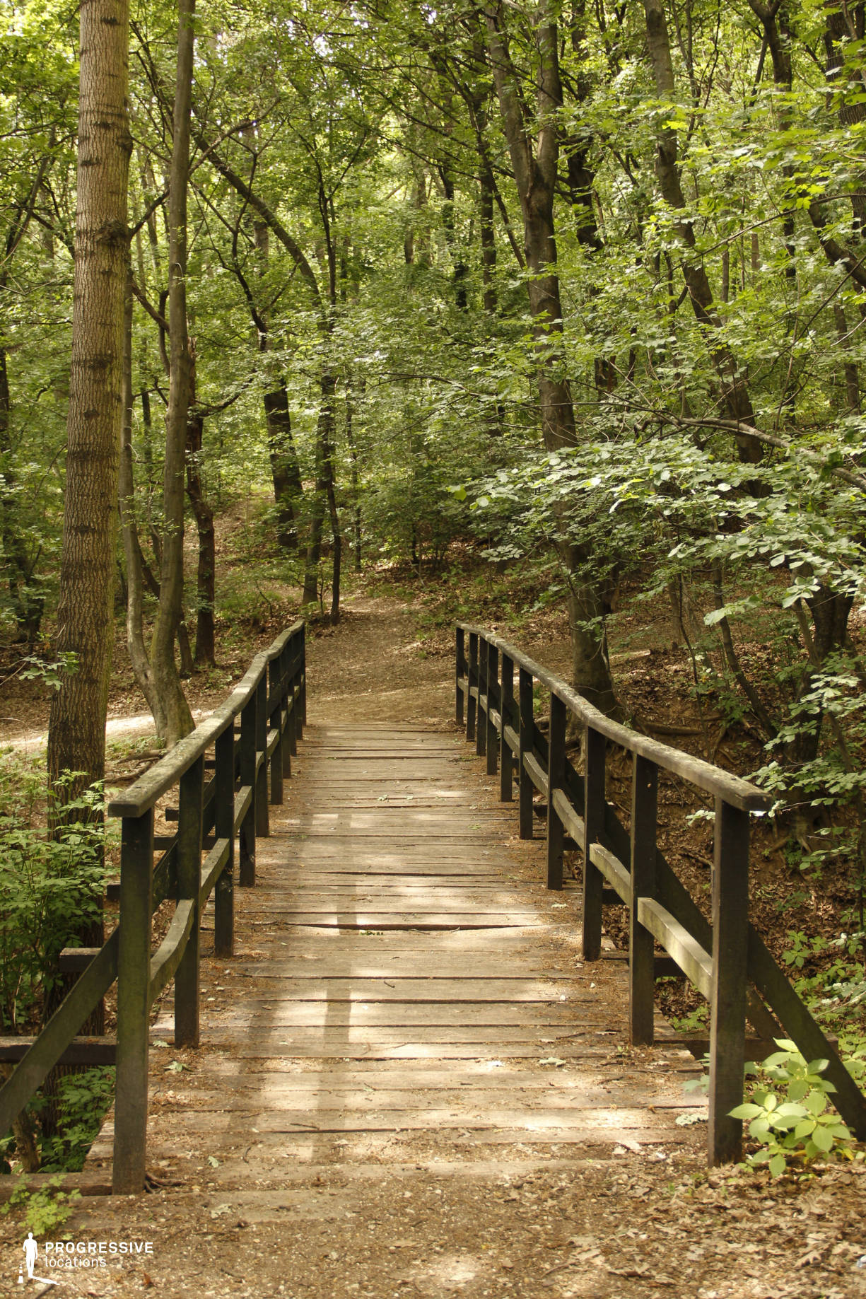 Locations in Hungary: Wooden Bridge, Huvosvolgy Forest