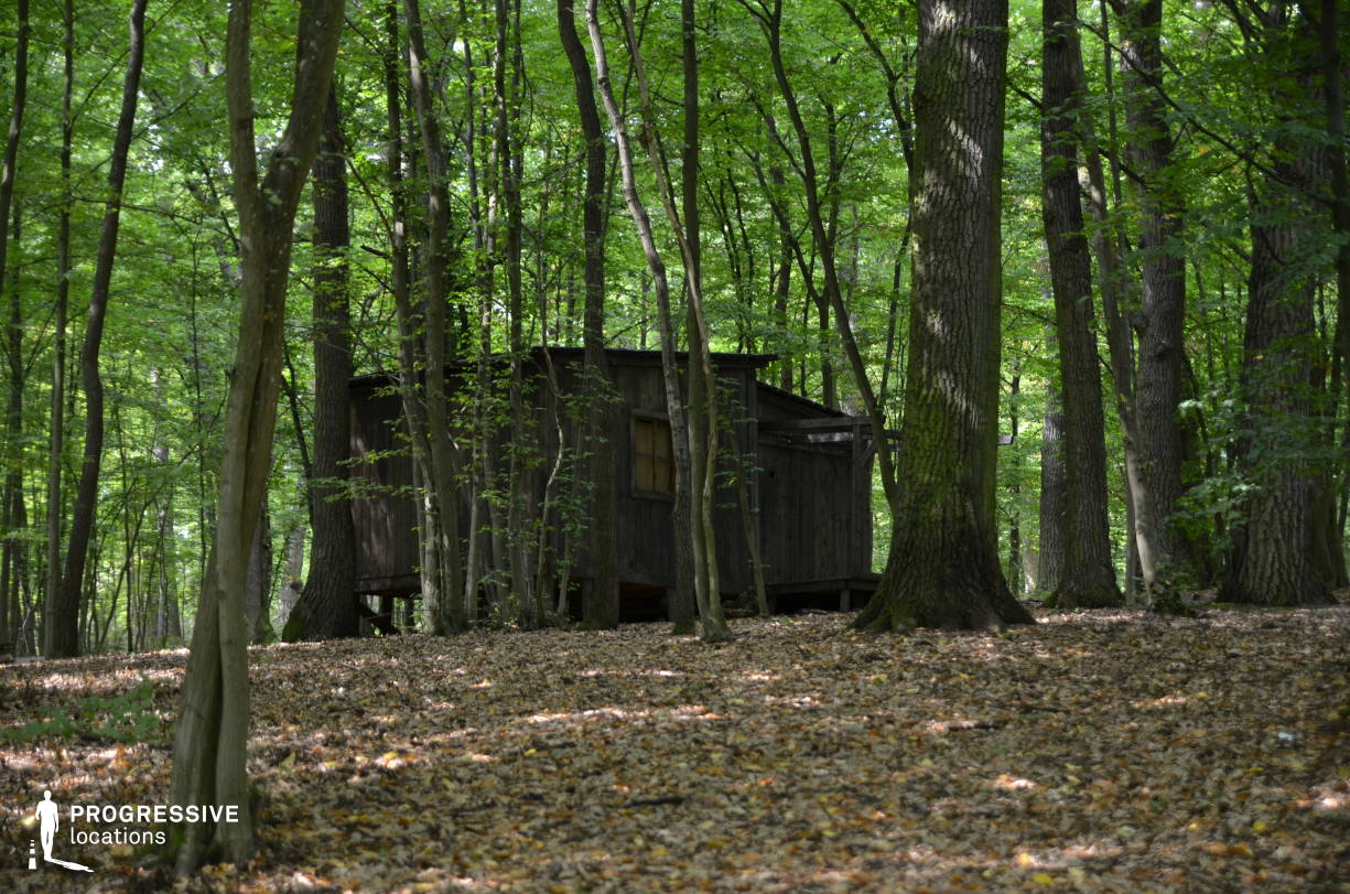 Locations in Hungary: Wooden Hut, Kiralyret Forest