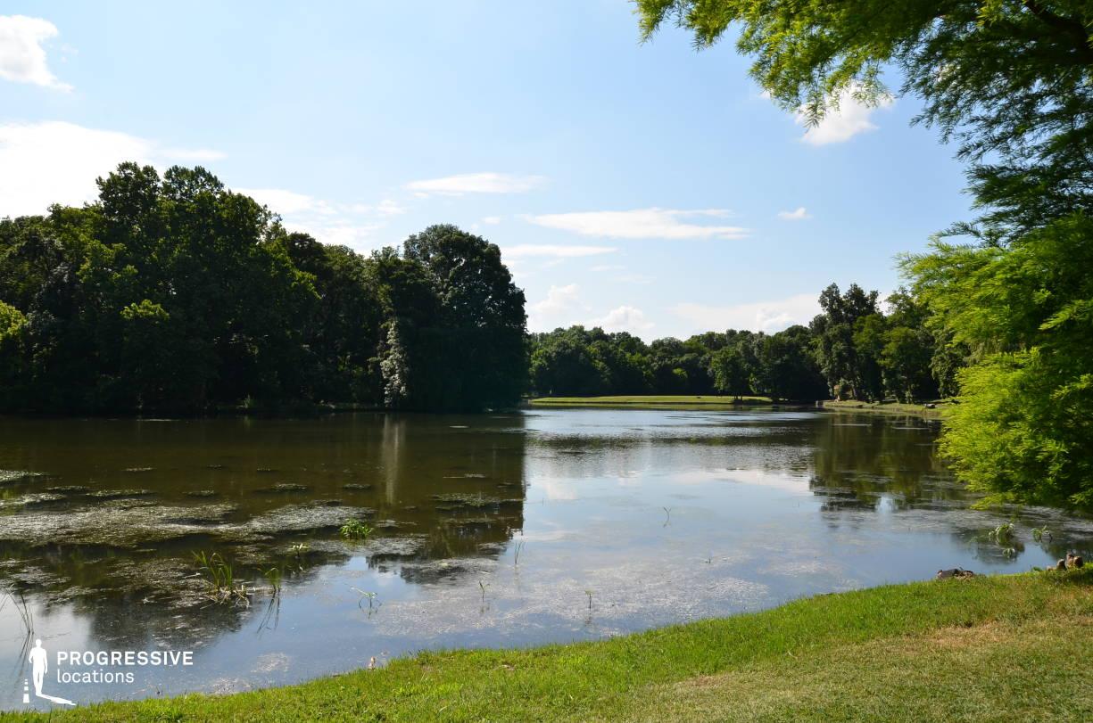 Locations in Hungary: Lake, Brunszvik Park