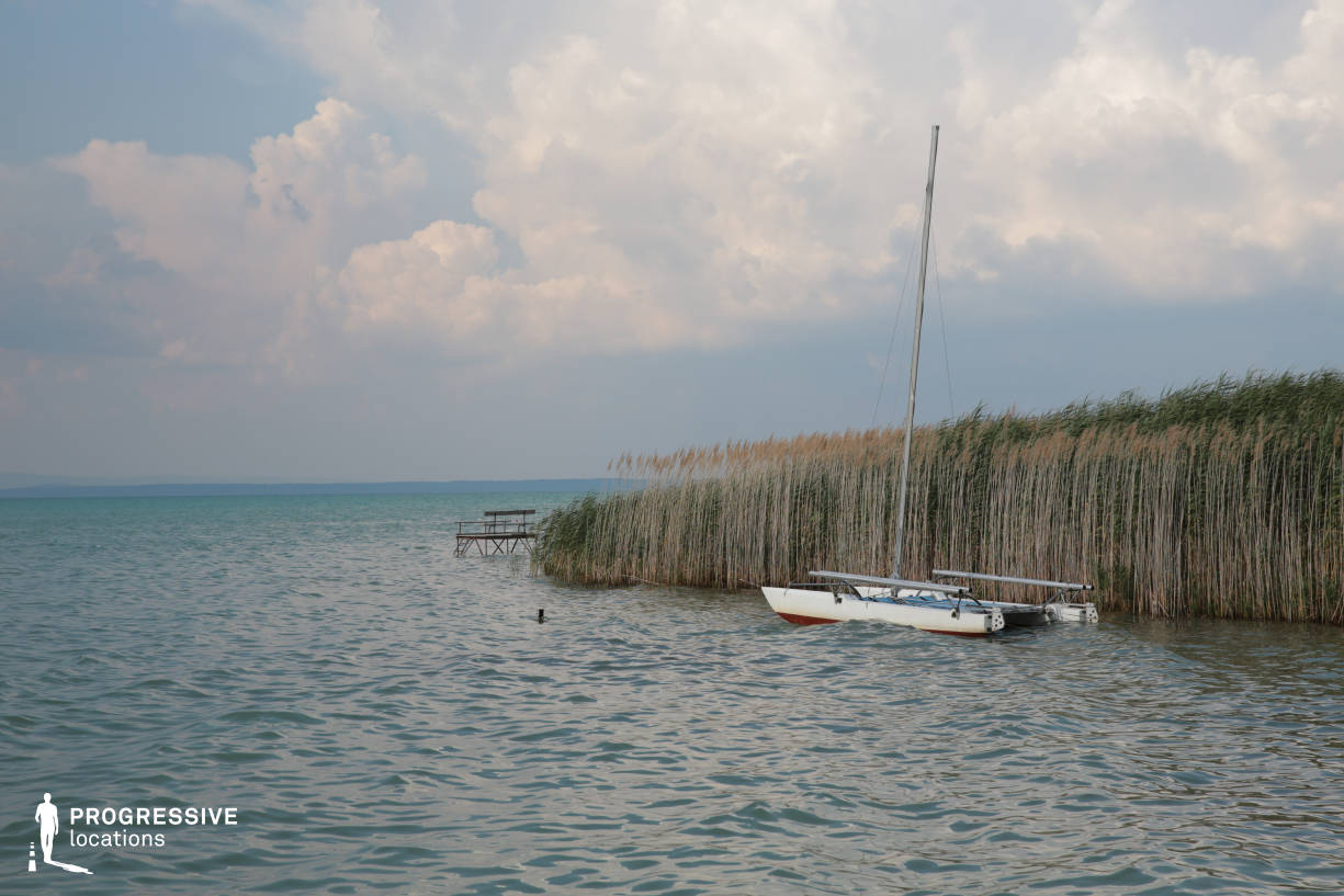 Locations in Hungary: Reed with Boat, Balaton