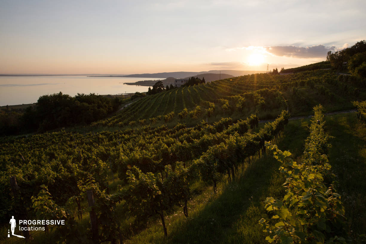 Locations in Hungary: Vineyards, Lake Badacsony