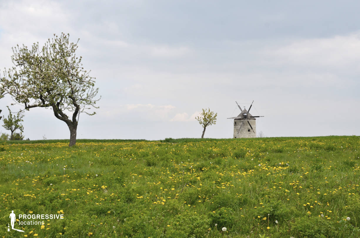 Locations in Hungary: Meadow with Windmill, Tes