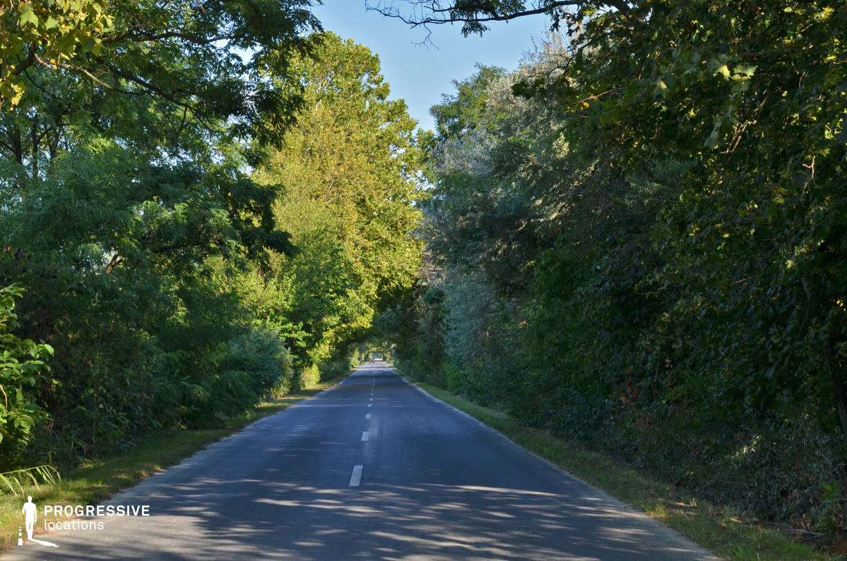Locations in Hungary: Countryside Avenue, Oroszlany